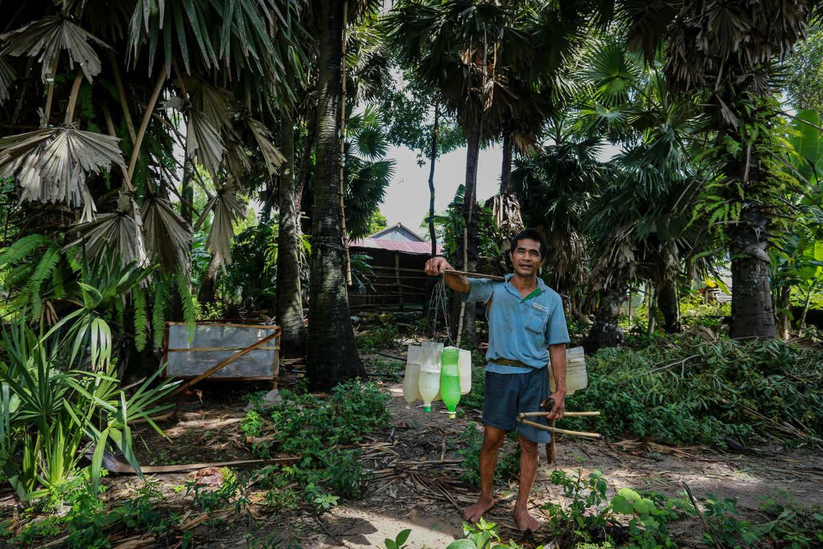 Gian nan 15 năm vắt vẻo trên cây thốt nốt mưu sinh ở miền Tây