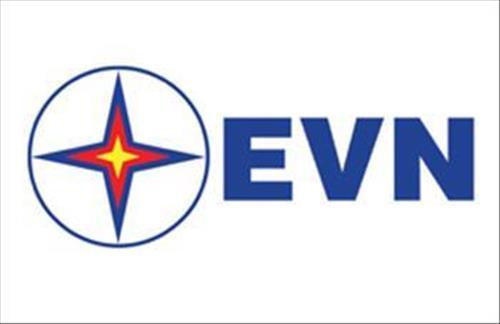 Điều lệ tổ chức và hoạt động của EVN