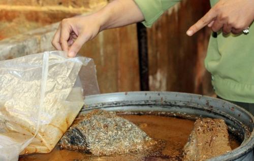 Kinh hoàng 2 cơ sở ủ mắm có dòi bò lúc nhúc