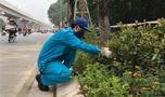 Quần áo bảo hộ màu xanh ngọc vải kaki Hàn Quốc